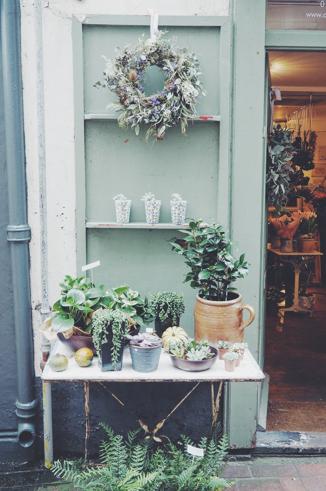 Add a Festive Touch to Your Garden   Home