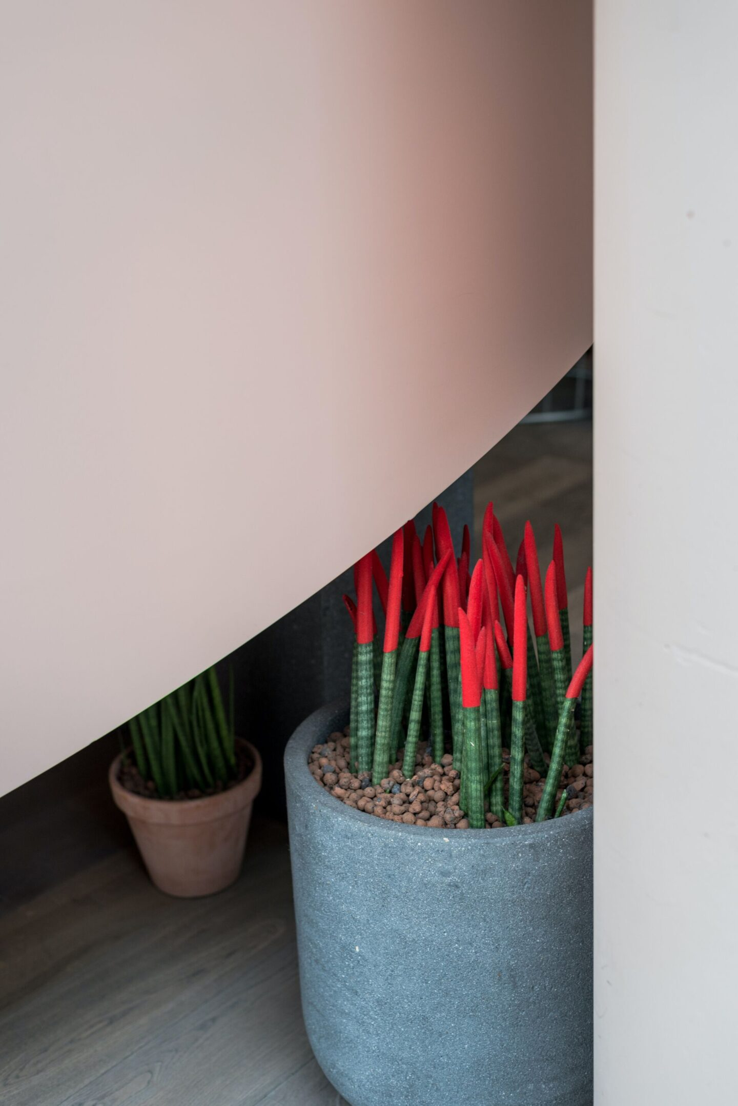 The Pros of Fake Plants | Home